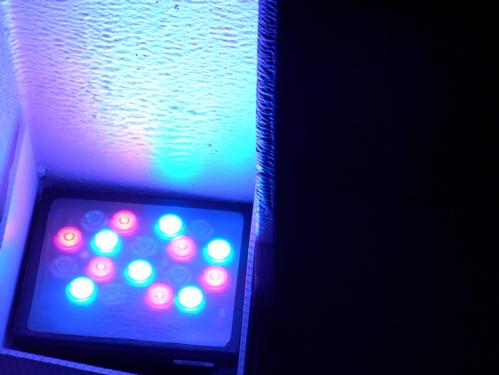 12407newmuseumlights.jpg