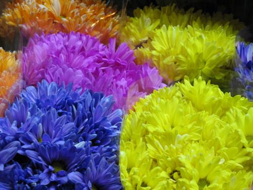 81106koreanmarketflowers.jpg