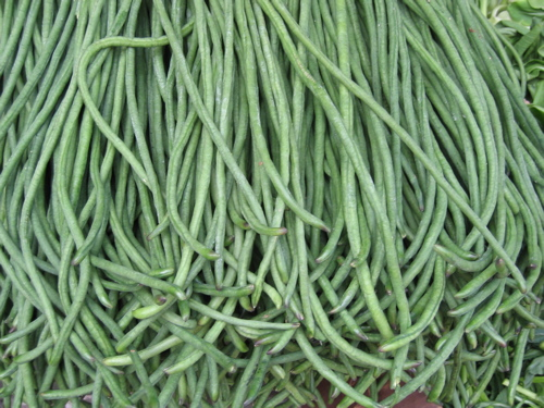 111305greenbeans.jpg