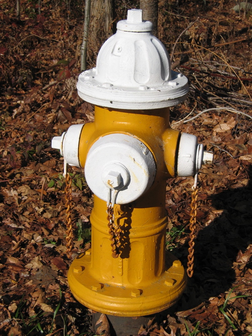 112704yellowwhitefireplug.jpg