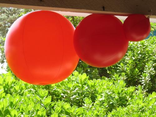 61305redballoonsgreenery.JPG