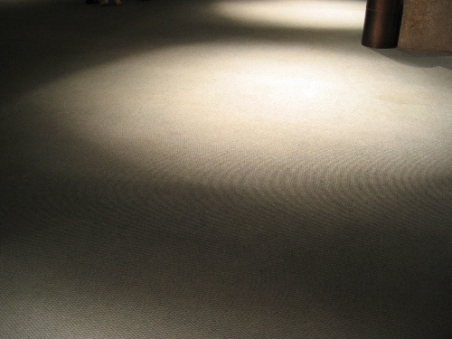 alice tully carpet.jpg