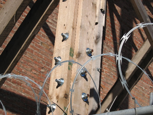 concertina wire wood.jpg
