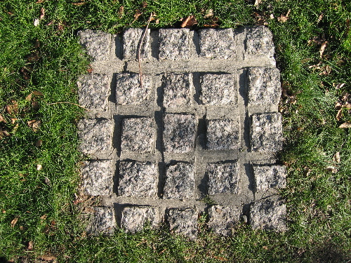 grasssquares.jpg