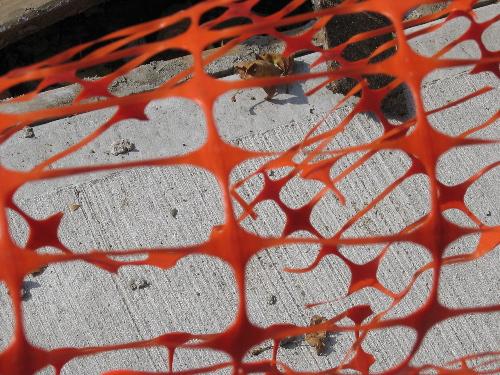 orangenet.jpg