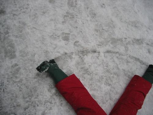 snowlegs.jpg