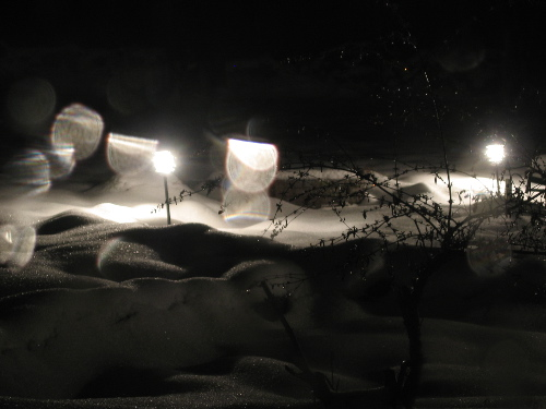 snowyardlights.jpg