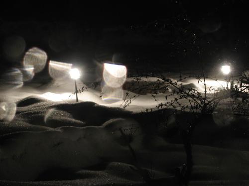 snowyardlights.jpg